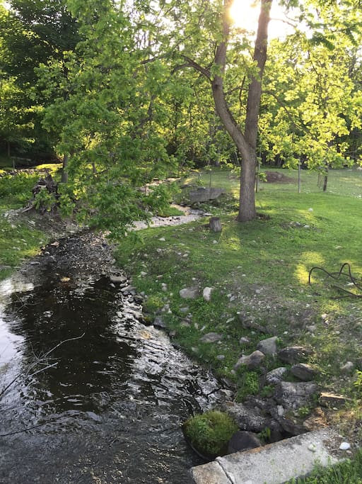 Sit by the brook and enjoy the beauty