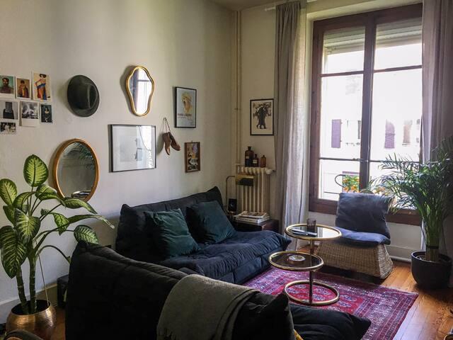 charment et cosy petit appartement 3 pièces