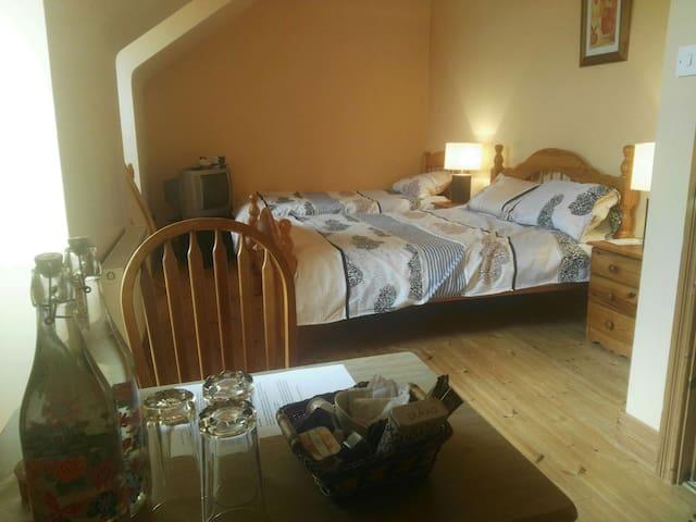 Sea view triple room in Miltown Malbay