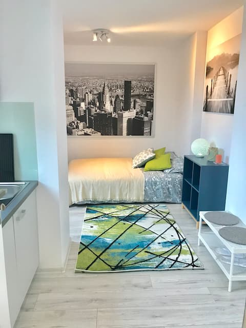 Apartament typu studio 11