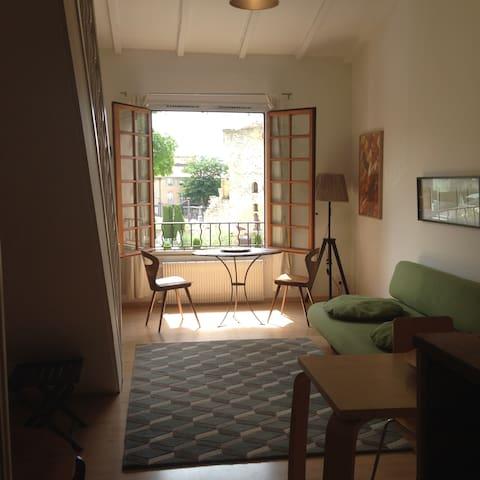 exceptional T2 50m2, center ,quiet sunny ,parking - Aix-en-Provence - Apartment