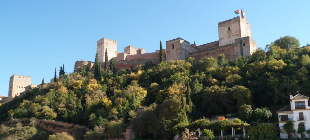 Albaicin Alhambra view + Breakfast((WiFi)) Terrace - Granada - Apartment