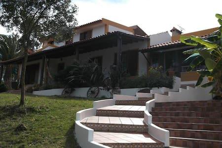 Quinta do Galego T1 - Nazaré