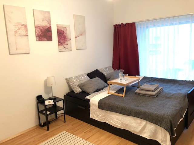 Cosy Room in Vienna City Apartment near Metro