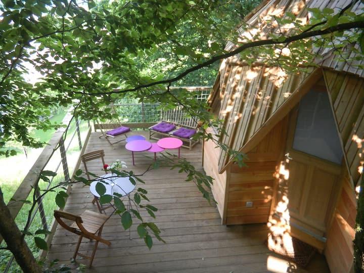 Cabane dans les arbres Dôme Terra Lina