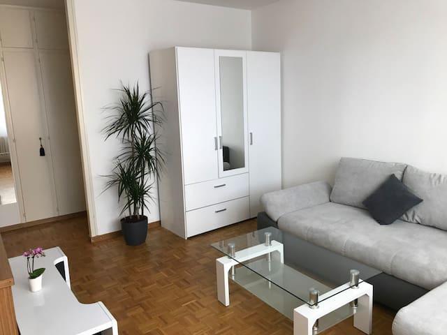 Geneva Cornavin Station  Apartment