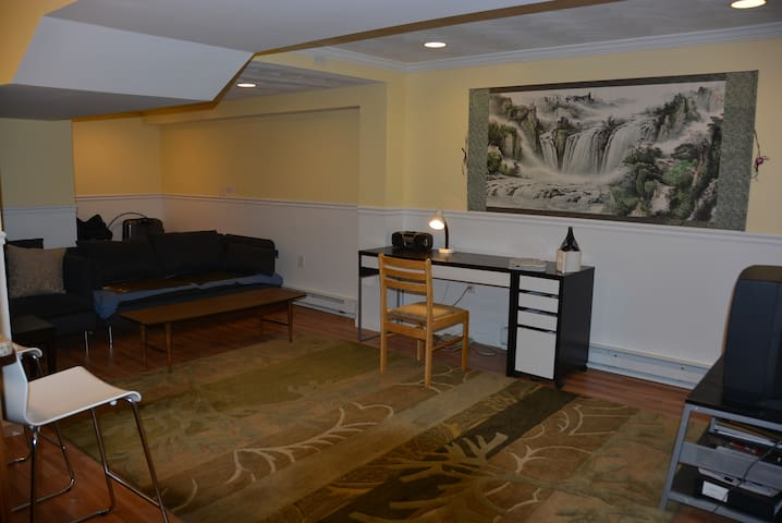 Luxurious One Bedroom Unit near BOSTON - Winchester - Apartment