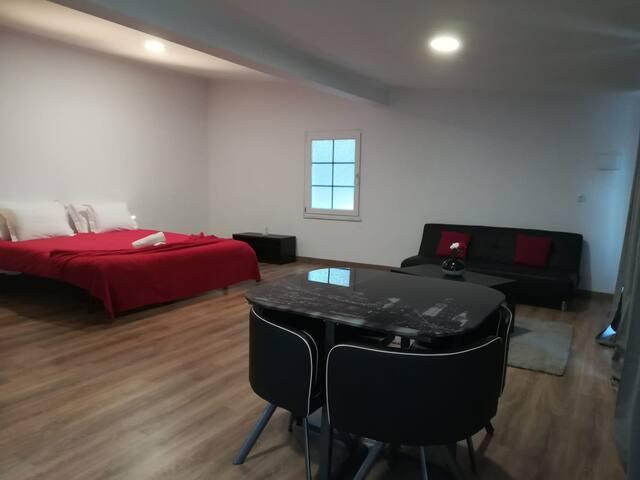 Open Space (Quarto e Sala) / Room and Living Room