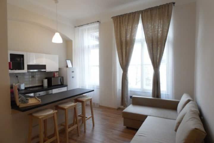 Karmelitska apartment by CHARLES BRIDGE