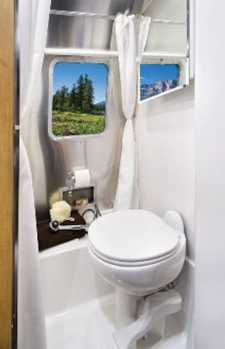 bathroom with flush toilet (actual outdoor vista differs)