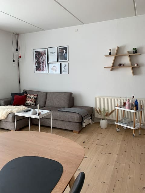 Small charming apartment in Aarhus