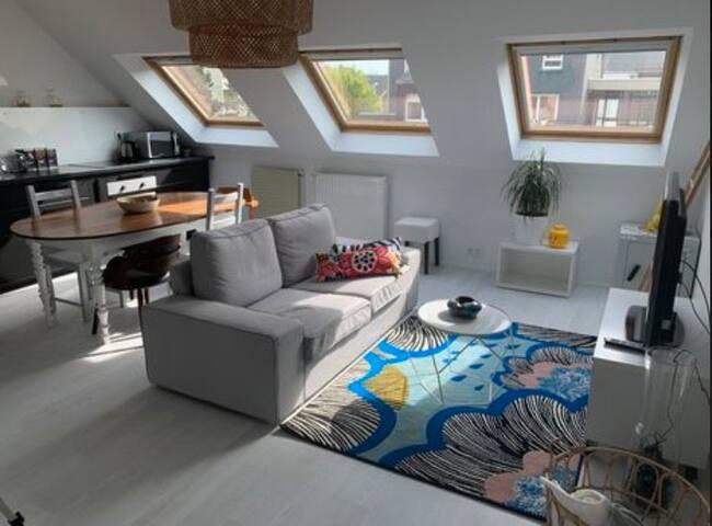 Joli appartement rénové Rennes avec parking ss sol