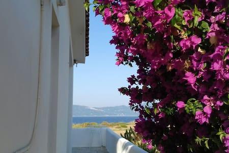 Xanemos Seaside House