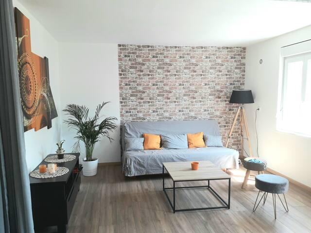 logement spacieux et accueillant .