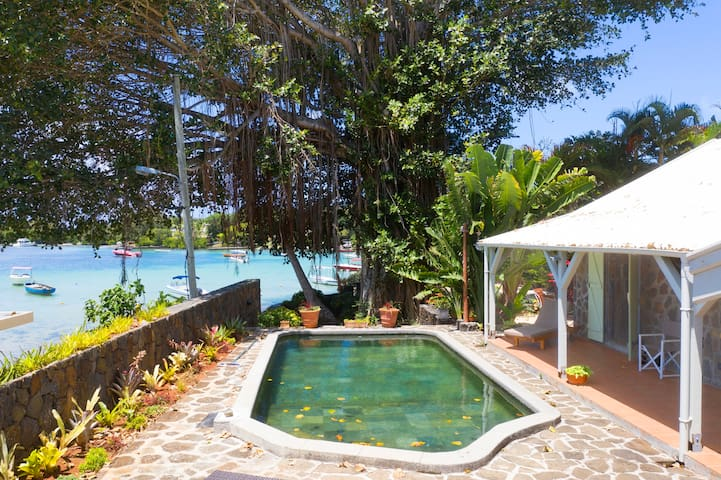 Villa Verde Banian 10 min to ile aux cerfs beach