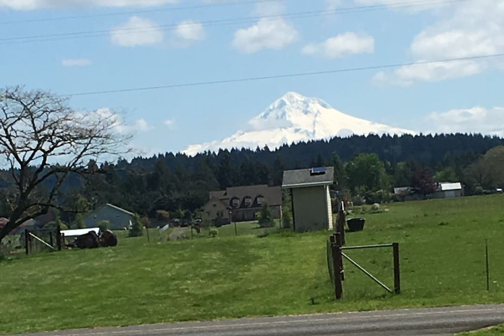 Gorgeous Mt Hood view right out your window!