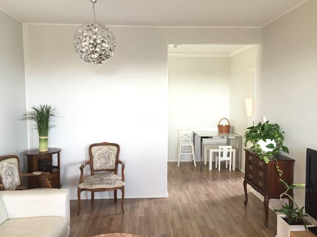 BEAUTIFUL 60 m2 1 BR APARTMENT