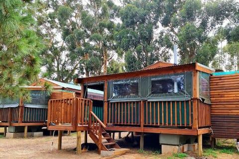 Hoogeland's Wood Cabins