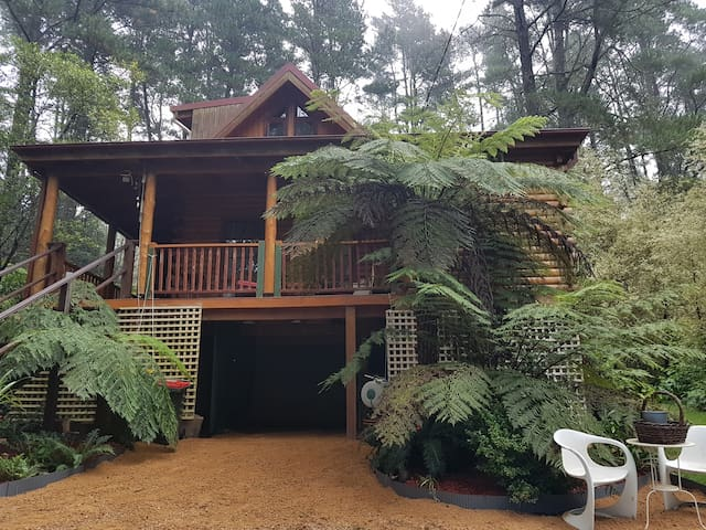 Cabin Retreat Homestead