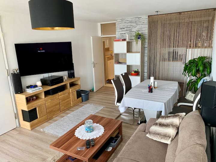 Modern and nice apartment close to Oktoberfest!!!