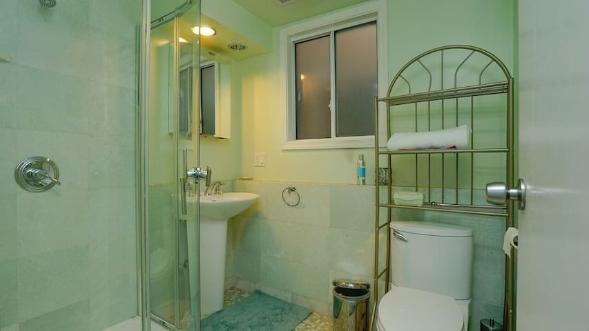 Private bathroom downstairs, across hall from bedroom