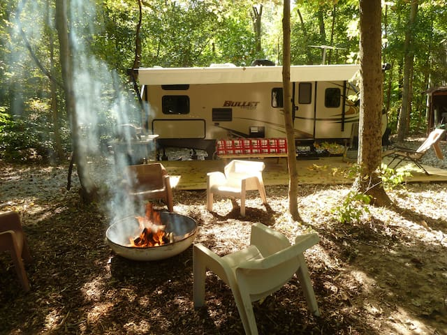 An RV in the woods - Carbondale