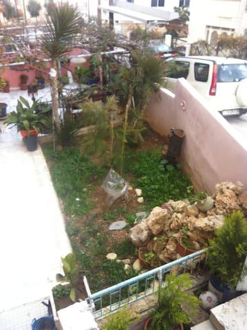 garden for the building