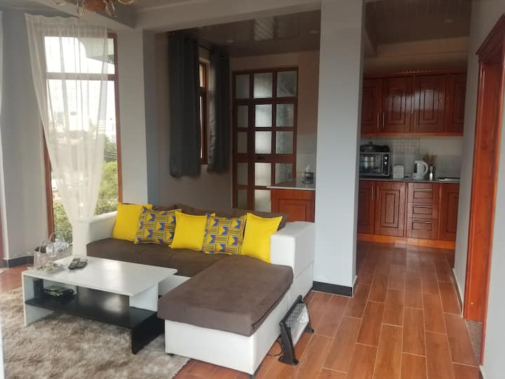 Cozy one bedroom apartment in the heart of Addis.