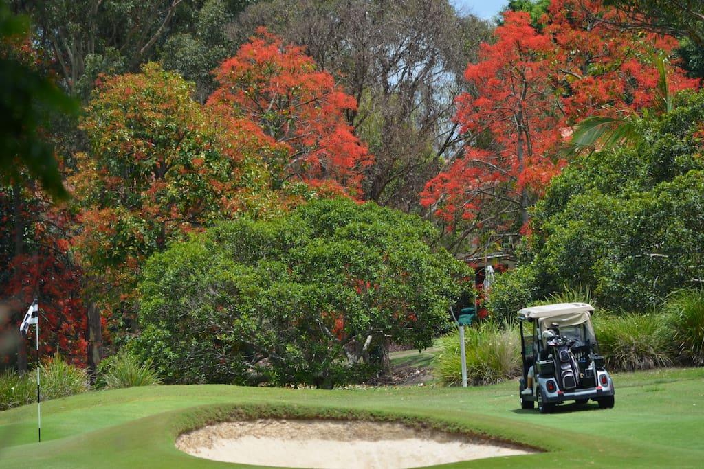 Golf Course on Hope Island