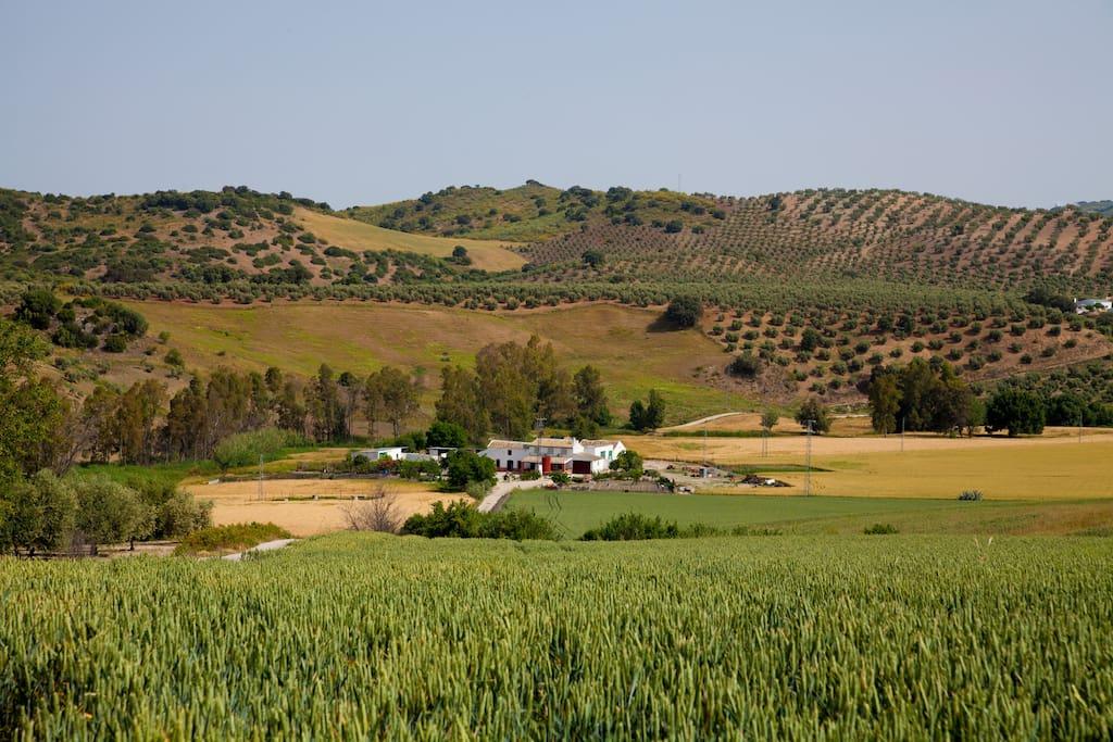 Casa Rural en un entorno único y privilegiado.