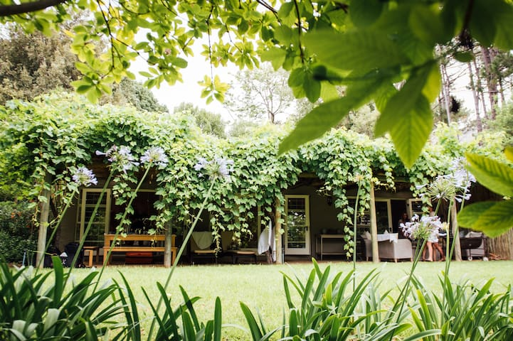 The Constantia Mist Cottage