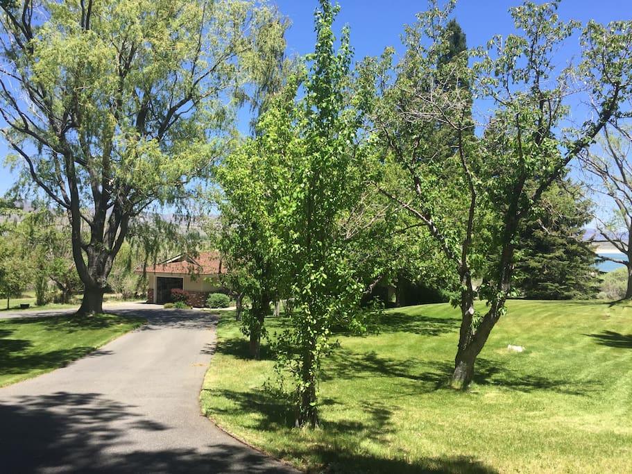 Driveway to the Mono Lake House