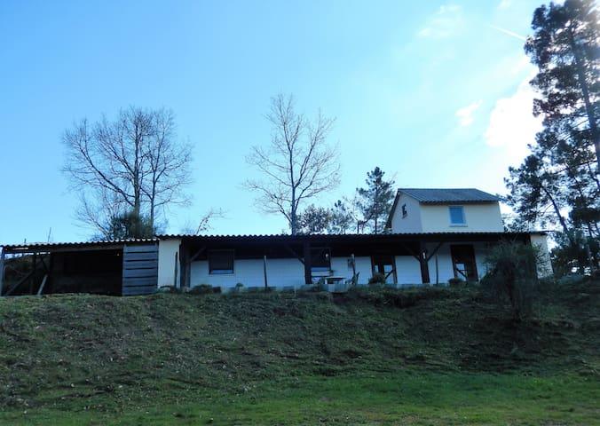 Quinta da tapadinha Casa di Sandra - Nogueira do Cravo - House