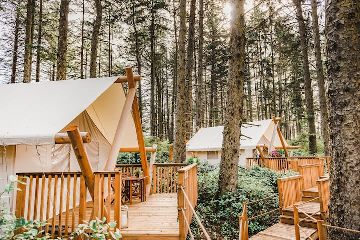 Rainforest & Beach Glamping, Haida Gwaii 1