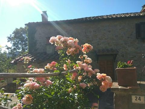 Rose&Rosemary Nyaralóház - Uscany