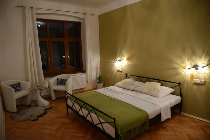 Luxury spa apartment in the city centre - Liberec - Departamento