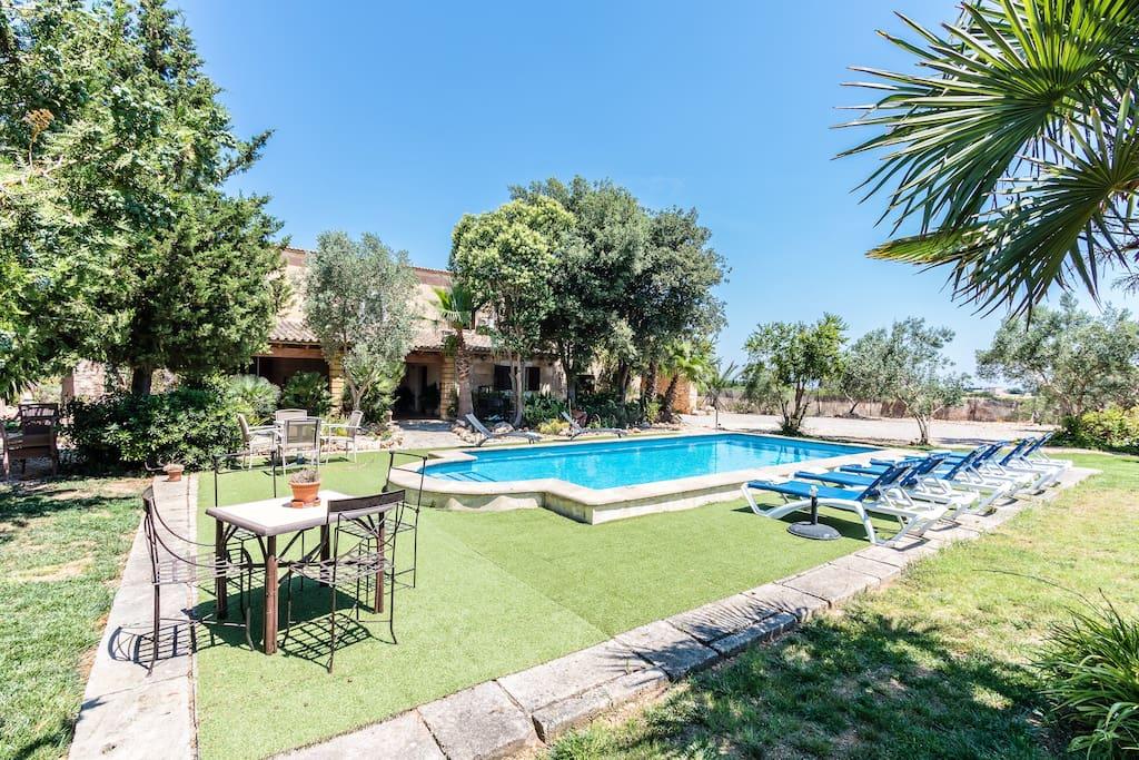 Villa Martina in Sa Pobla · Mallorca