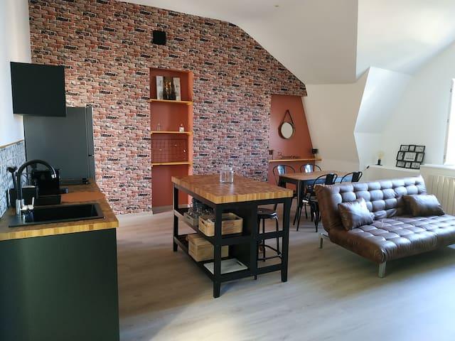 Appartement - 1 chambre - déco industrielle