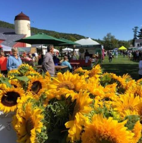 A Weekend in Mad River Valley: Fall Edition Day 2