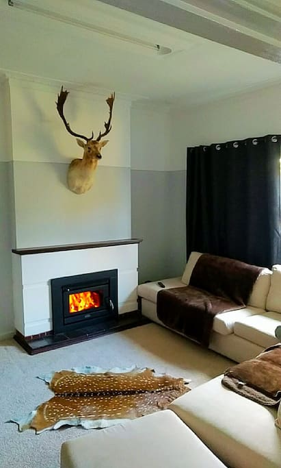 Lounge with some unusual decorations and fireplace which is nice in Winter