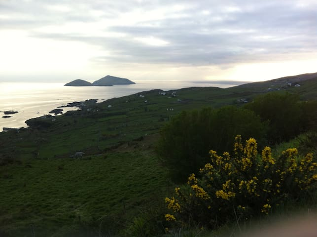 Caherdaniel Derrynane, Ring of Kerry'Johnny Bobs'