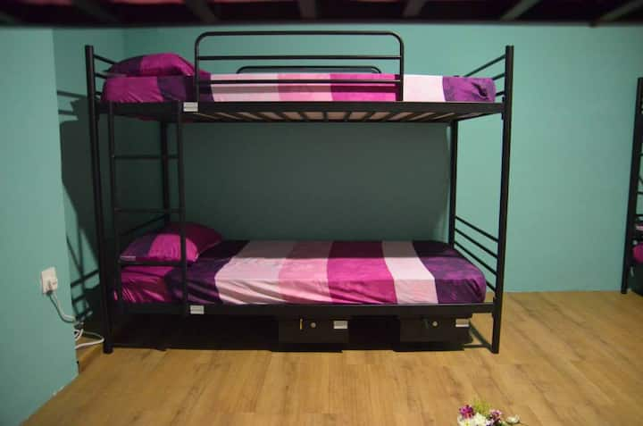 Bed in Mixed dormitory with window