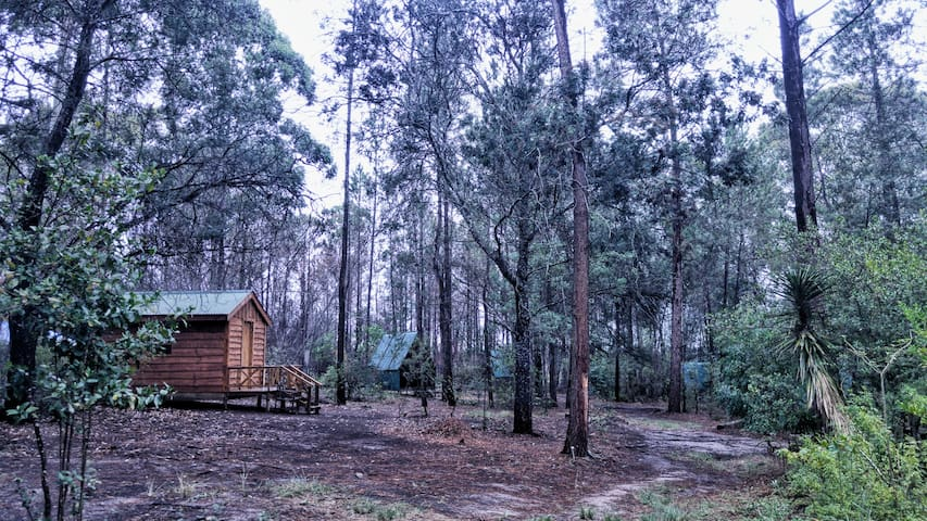 Pachamama Forest Cabin 3