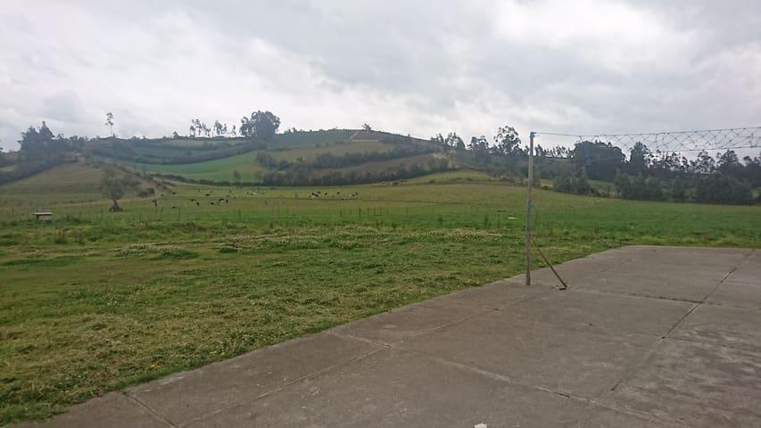 Hacienda San Andrés & Hnos.