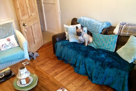 Large double room in house. With two small dogs.