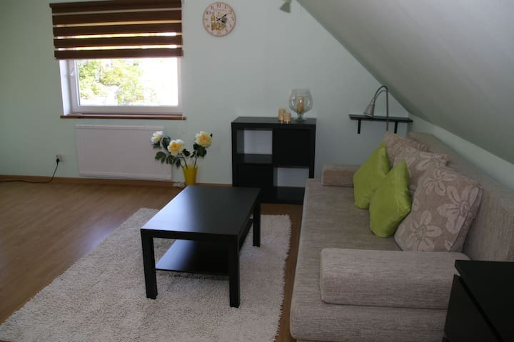 Private and cosy apartment near city centre - Tartu - Apartament