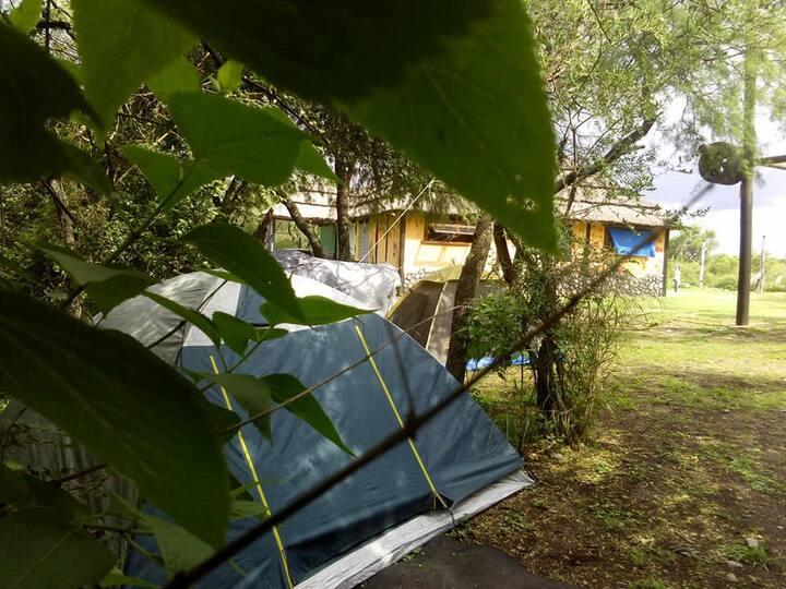 Las Maravillas Camping H Gathering - Traslasierra