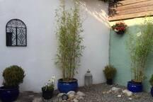 Town/ Patio Garden