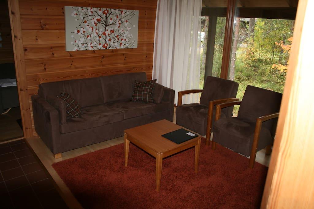 Oleskelutila, living room