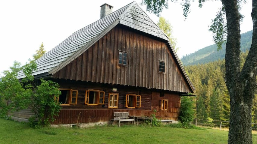 Loggers Lodge 250-year-old. Total Privacy. - Lahnsattel - Skur